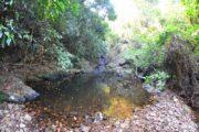 koh-chang-trekking-dschungel-wasserfall