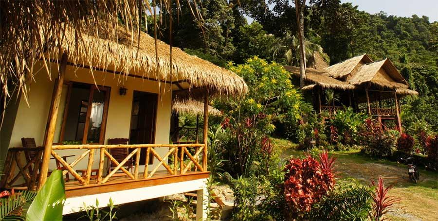 besondere-unterkünfte-koh-chang-oasis-dschungel-baumhaus